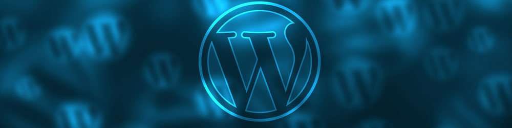 JE WORDPRESS WEBSITE SNEL HERSTELLEN MET EEN BACKUP!