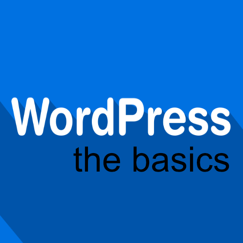 AAN DE SLAG MET WORDPRESS THE BASICS